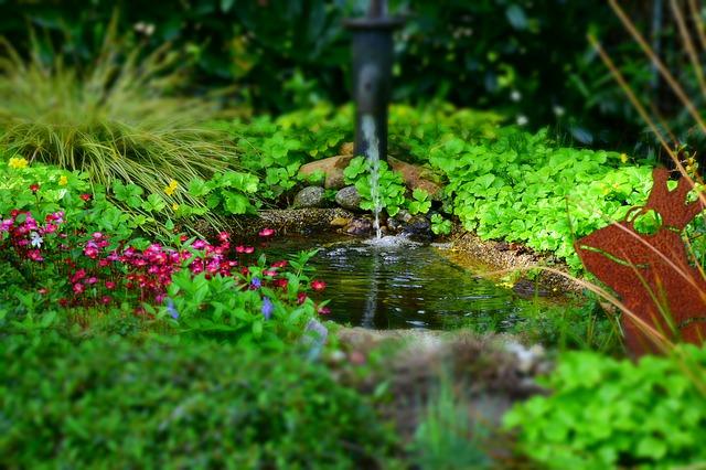 zahradní jezírko.jpg