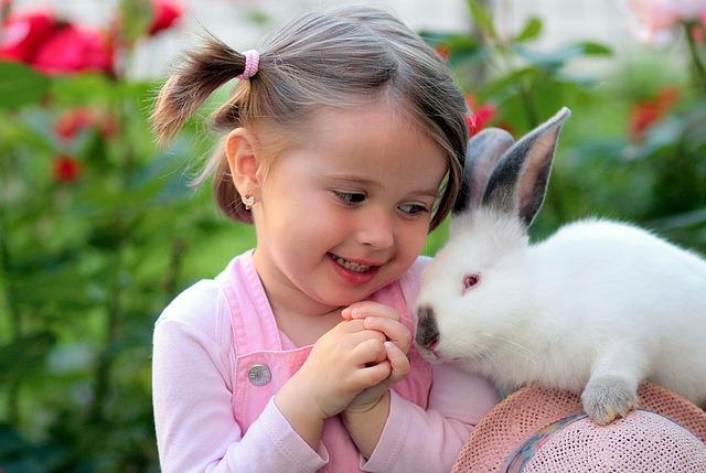 dívka a králík
